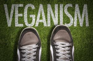 Vegane Schuhmarken